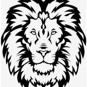Aslan – ilahi hakimiyyət, güc, himayədarlıq və xilaskarlıq rəmzidir